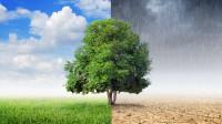 voce-sabe-o-que-sao-as-mudancas-climaticas-blog